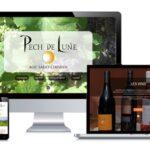 Site internet client portfolio Pech de Lune